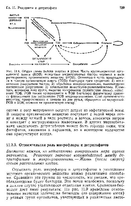 Общая схема потока энергии
