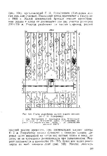 Схема разработки лесосек узкими лентами (по Г. ГГ. Тимофееву) .