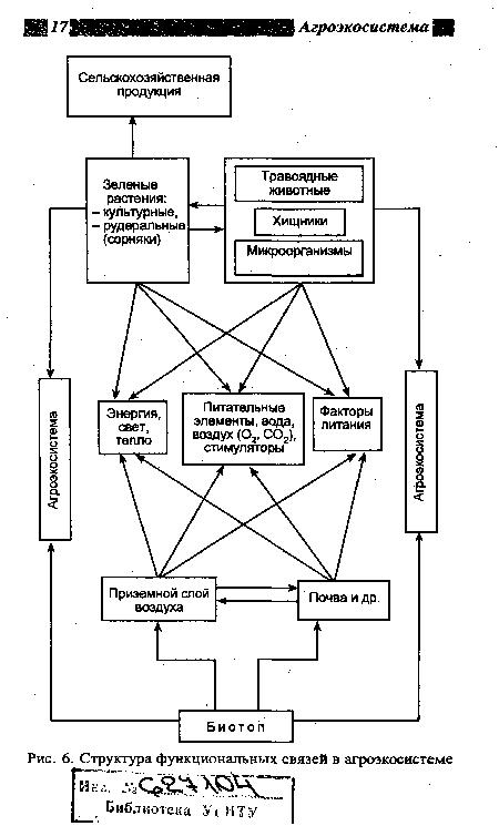 функциональных связей в