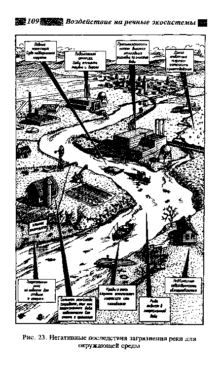 последствия загрязнения
