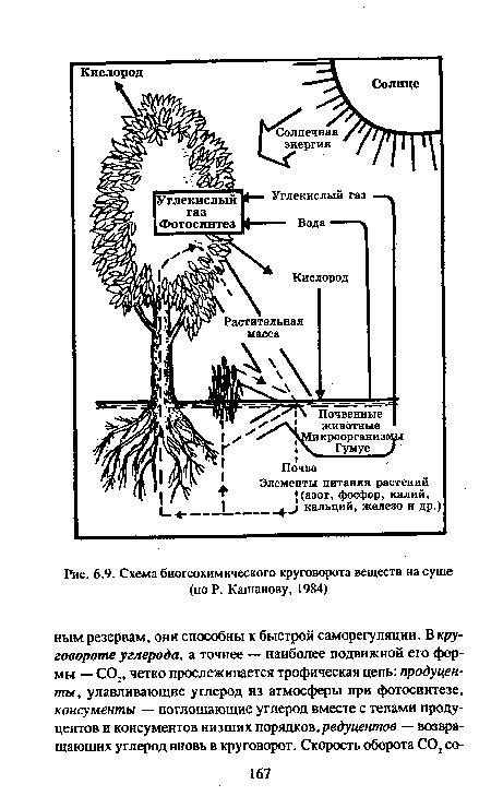 Схема биогеохимического