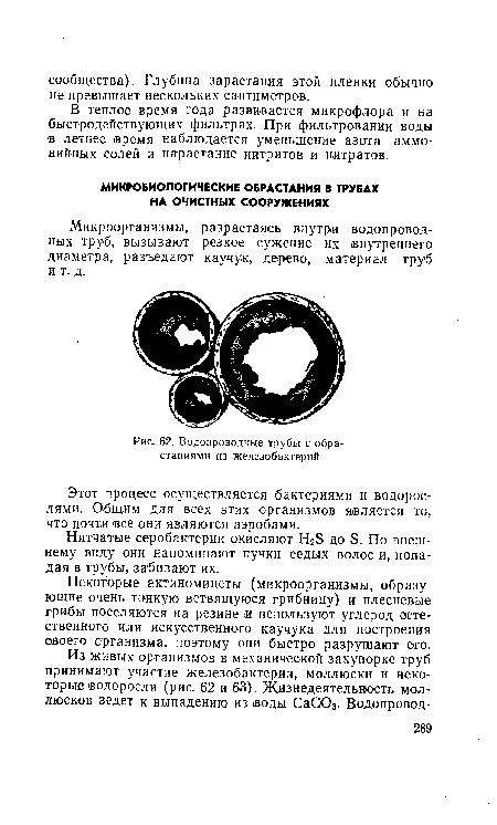 Водопроводные трубы с обрастаниями из железобактерий