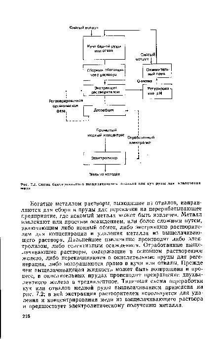 меди, Схема бактериального