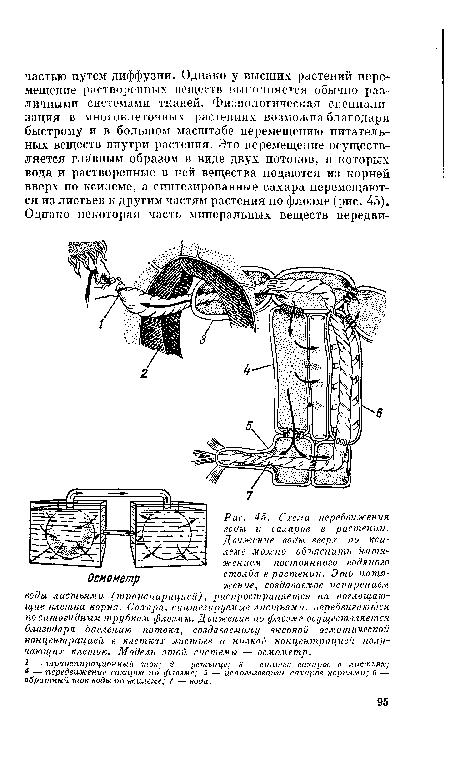 Схема передвижения воды и