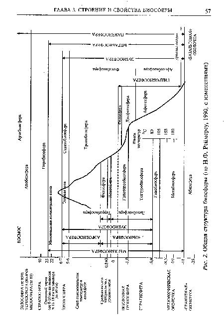 Общая структура биосферы