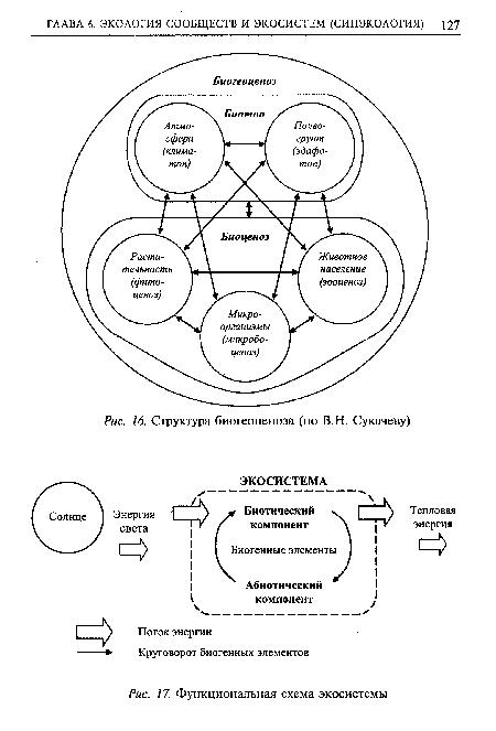 схема экосистемы