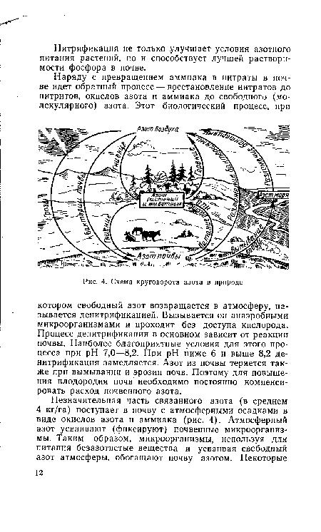 Круговорота серы в природе схема