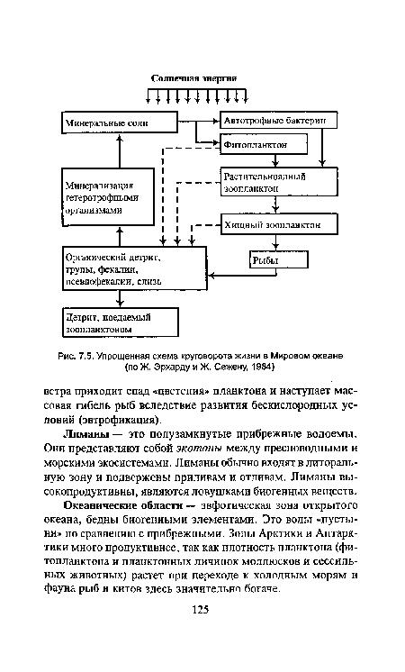 схема круговорота жизни в