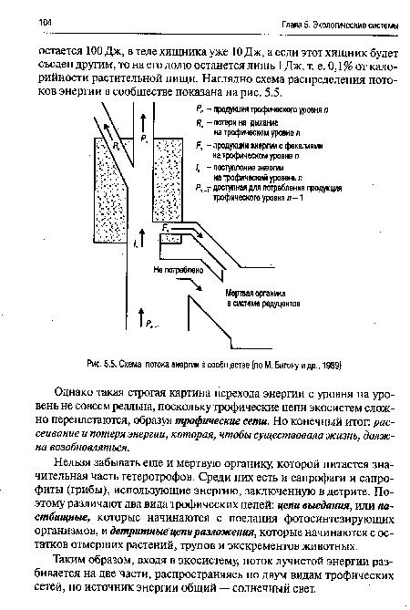 Схема потока энергии в