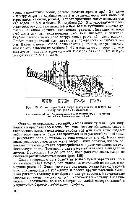 Схема зарастания озера