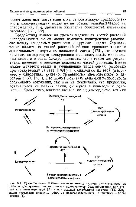 Взаимодействия между растением и растительноядным животным.