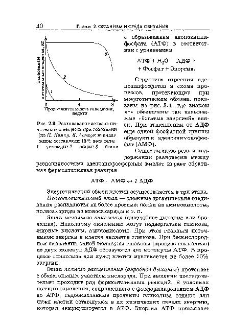 Структура строения аде-нозинфосфатов и схема процессов, протекающих при энергетическом обмене, показаны на рис. 2.4...