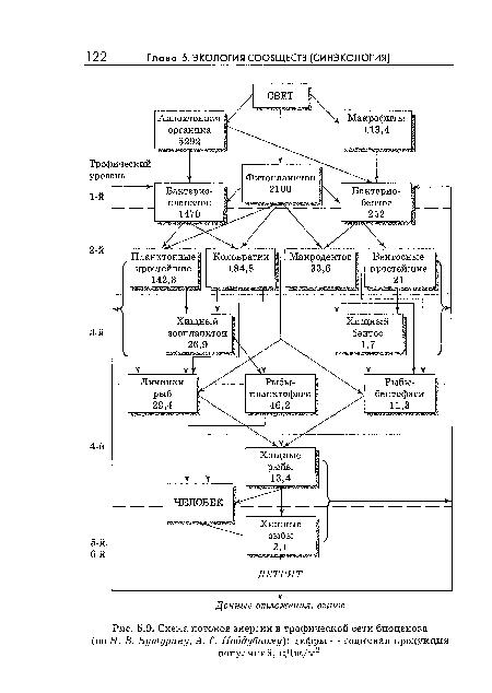 Схема потоков энергии в