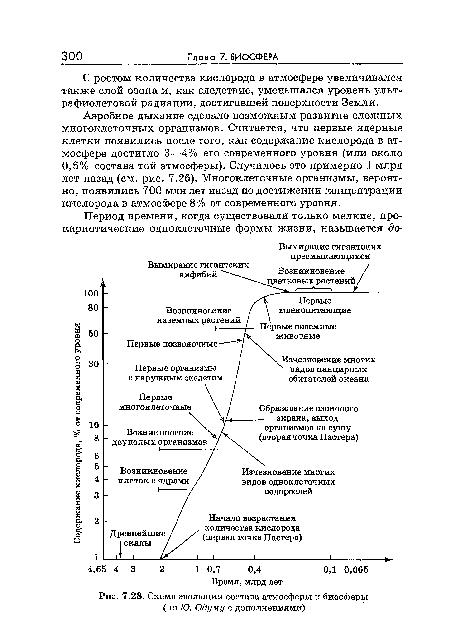 Схема эволюции состава атмосферы и биосферы (по Ю. Одуму с дополнениями) .